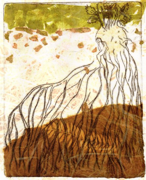 celeri-lumiere-crue2